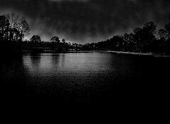 Long Pond (Bill(iudshi8uf)) Tags: bw white black nature big pond long florida lagoon canoe swamp marsh panhandle escambia faceoffwinner a3b