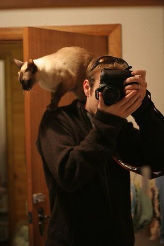 me + cat