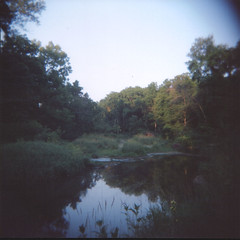 Indian Creek (Zach Reinhart) Tags: holga toycamera mediumformat squareformat 6x6 120 square portra 400nc iowa cedarrapids trail sacandfox creek indiancreek landscape