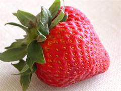 Strawberry II (knoflook) Tags: jake knoflook strawberries red seeds fruit summer macro nature jakeknoflook