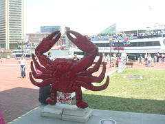 DSCN3923 (Andrea and Michael) Tags: baltimore summer2005 harbor crab crabtown