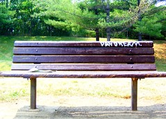 Day Dream Bench (color)