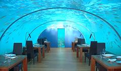 underwater restaurant - by mali mish