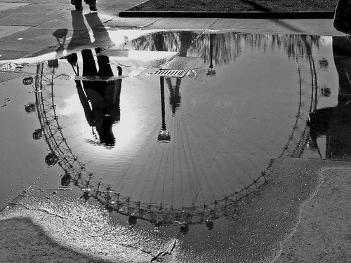 An Eyeful Of Puddle! by tarotastic.