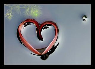 ~ heartfelt ~