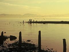 gonefishing (sous les pavés, la plage) Tags: rateme17 rateme28 rateme37 rateme47 rateme510 rateme67 findleastinteresting veeh