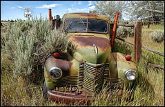 (shadowplay) Tags: abandoned oregon truck fence weeds rust decay 395 haitriedtorefavouriteit