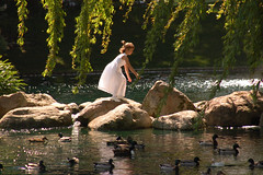 innocent frolic (jen clix) Tags: wedding flowergirl willowtree ducks pond reflection jumping santaclara