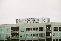 ynotdose (scottobear) Tags: ynot dose graffiti florida 7soliders