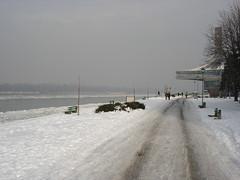 25. maj pod snegom (Zicomen) Tags: places beograd reka zima