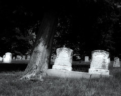 Life and Death (kmroddy) Tags: life death struggle mort grave