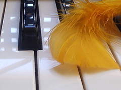 PIANO (marlenells) Tags: light shadow white freeassociation yellow topc25 topv111 1025fav topv555 topv333 close lovely1 topc50 piano feather loveit i500 p1f1