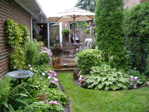 Backyard Garden Part 21