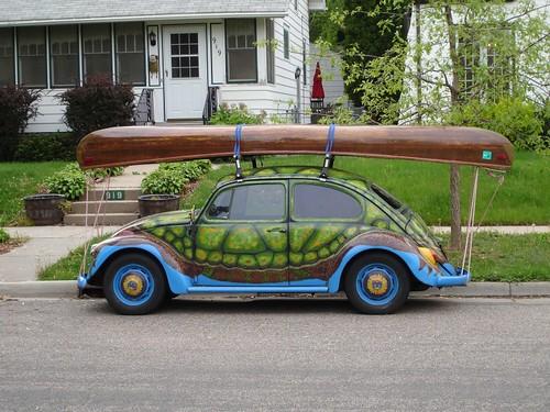 turtle_canoe