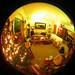 1214_fish-livingroom-kc-perk06