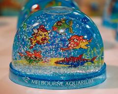 we sail the ocean blue (hangdog) Tags: snowdome melbourneaquarium blue fish toy plastic paperweight catchycolors victoria australia nikon d70 2005 gilbertsullivan hmspinafore