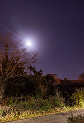 Moonrise (aaron_eos_photography) Tags: moon moonrise longexposure canonef24105mmf4lisusm trees