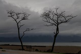 Day 325 - Beach Rain