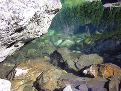Crystal Clear (Living Juicy) Tags: green washington granitefalls heatherlake livingjuicy lj2005
