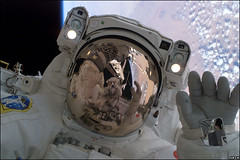 Noguchi-Robinson-6 (dcorking) Tags: space shuttle nasa noguchi robinson spaceshuttle sts114 spacewalk orbit humanspaceflight