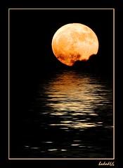 Liquid Moon (hodad66) Tags: graphics photoshop moon reflection florida topf25