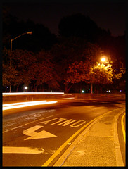 (minusbaby) Tags: nyc newyorkcity usa tree streetlight arrows asphalt centralparkwest crosstown