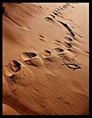 Steps (AL Nuaimi) Tags: al nuaimi dxb uae desert