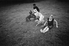 Drama in the park (David Bivins) Tags: 2005 park dogs xprocess kristen drama ektachrome chihiro xtol davidbivins