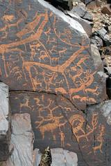 Outlandish Antlers (MykReeve) Tags: mongolia gobidesert gobi desert petroglyphs bichigtkhad bayanmountainrange antlers horns deer carving