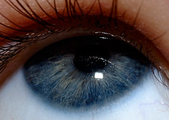 "Blue Eye Study ""In Close"" (dulcelife) Tags: macro eyes lashes lens pupil structure baby eyeballs nikon nikond70 nikon105mmf28micronikkor tccomp022 perfect wow"