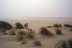 Girls in Blowing Sand (lawatha) Tags: friends beach grass oregon sand dunes foggy windy getty sanddune ammophila europeabeachgrass