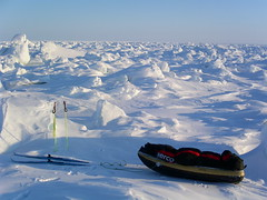 Looking for a route (Ben Saunders) Tags: northpole bensaunders