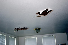 35016236 8de868018f m Fix Water Damage