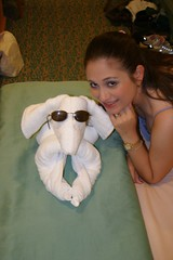 a towel dachshund of my very own (karen lisa*) Tags: travel cruise wedding happy honeymoon cruising cruiseship royalcaribbean cruises dachshunds cruiseships cruisevacation towelanimals enchantmentoftheseas