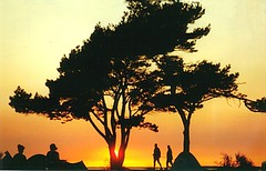 a bit like africa (Strassenbelag) Tags: ocean wood camping trees light sunset sea sky people orange sun tree beach nature beautiful silhouette topv111 germany coast natural hiking magic silhouettes beautifullight tent balticsea baltic personality persons moment rgen ruegen rugen campingground aesthetik momentsinlife