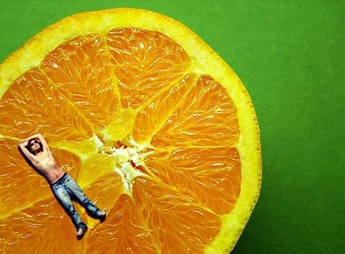 Lúc nào thì người Mỹ mới bắt đầu biết trồng cam?