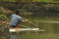 Maintenance Keeper & Birding Guide (bocavermelha-l.b.) Tags: menatwork nusadua inbali south–china–sea inindonesia wildlifebali