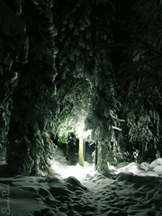 joulukuu5 2005 178b (Fantasyfan.) Tags: winter light snow topv111 tag3 taggedout backlight rural wow finland topv555 topv333 tag2 tag1 shadows darkness topv1111 topv999 topv777 pudasjrvi fantasyfanin prj womenly siirretty