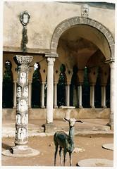 Villa Cimbrone a Ravello (sangiopanza2000) Tags: travel italien italy italia napoli naples viaggi italie ravello giardino giardini villacimbrone costieraamalfitana sangiopanza
