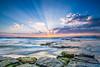 Turimetta Beach Sunrise (WT Journal) Tags: australia nsw sydney turimetta beach sunrise