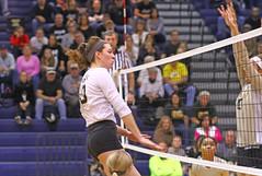IMG_8055 (SJH Foto) Tags: girls volleyball high school york delone catholic team teen teenager net battle spike block action shot jump midair burst mode
