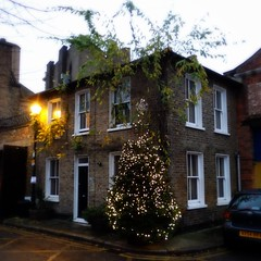 Christmas is coming ... (wirewiping) Tags: stepneygreen mileendoldtown mileendplace towerhamlets e3