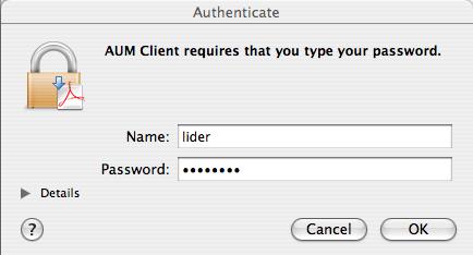 Password authentication screen