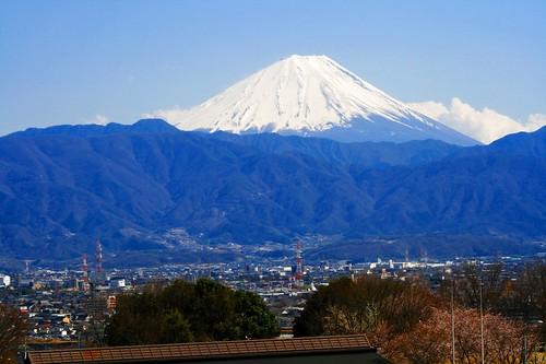 fujifuji2