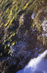 A bright winter (giuli@) Tags: snow color colour film grass analog geotagged lenstagged colore dia slidefilm erba velvia neve umbria diapositiva fujivelvia50 velvia50 fujivelvia canoneos300 2870mm iso50 canonef valnerina giuliarossaphoto canonef2870mmf3545 geo:lat=42812907 geo:lon=12874088 noawardsplease nolargebannersplease
