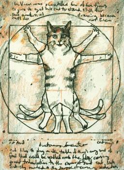 Vitruvian Cat
