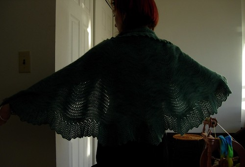 Backlit Bloom Shawl