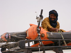 Il facocero - a 15 KM dalla meta finale - ha tirato le quoia (SIGG) (1amico) Tags: algeria 2007 april desert raid 1300 km from djanet tamanrasset ktm viaggi avventure nel mondo