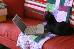 zina uses the internet
