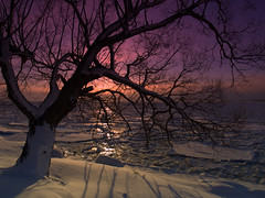 Winter Sunrise (jj8rock) Tags: winter ontario canada sunrise kingston bratanesque jj8rock